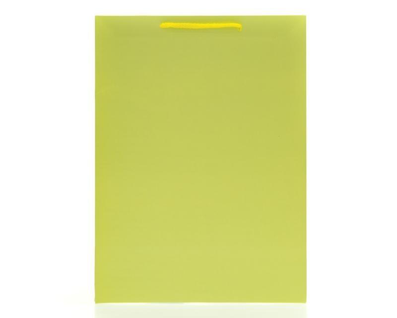Bolsa de Cartón para Regalo 24.5 x 12.5 x 33.5 cm Verde